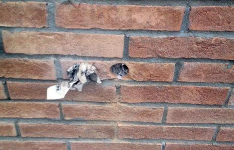Intervento di foratura su facciata con mattoni a vista